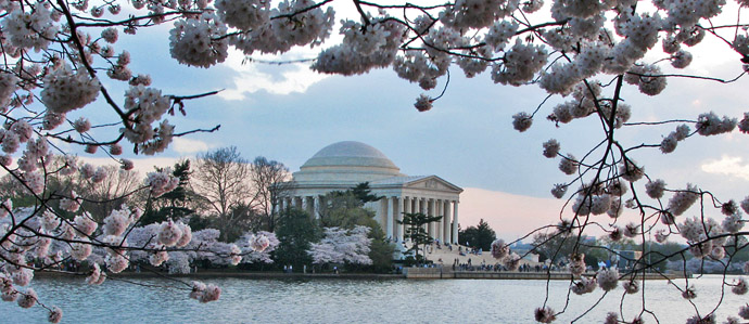 14 Things We're Excited to See Coming Up This Spring in DC