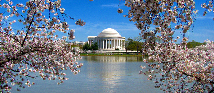 Celebrate Spring at the Cherry Blossom Beer and Wine Festival, March 26 and April 9