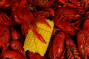 Where to Celebrate the Start of Crawfish Season in DC