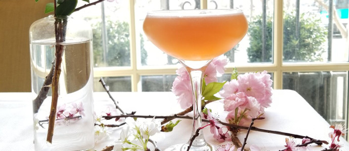 Where to Drink During the Cherry Blossom Festival in D.C.