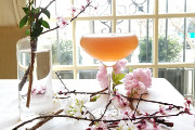Wine Bar | Where to Drink During the Cherry Blossom Festival in D.C.