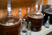 Craft Beer DC | Move Over Kombucha, Kefir Beer Could Be the Next Big Thing in Fermentation | Drink DC
