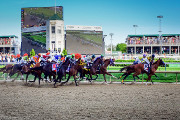 Wine Bar | Where to Watch the 2017 Kentucky Derby in D.C.